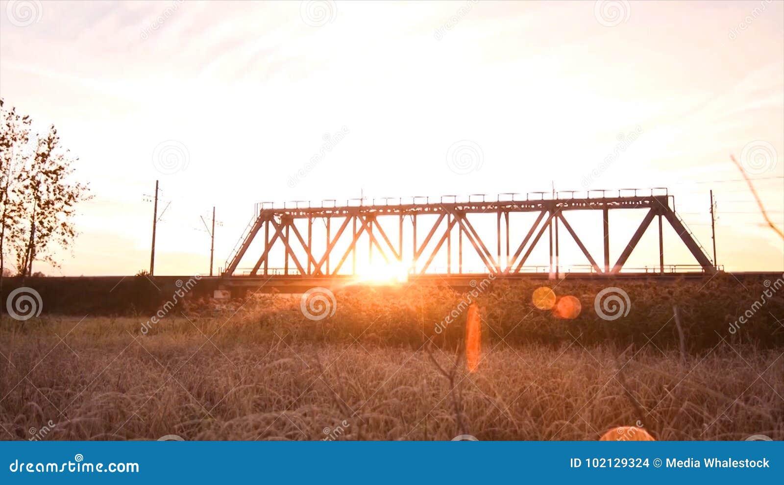 Bridge road. Train traffic transportation. Timelapse railway bridge on sunrise