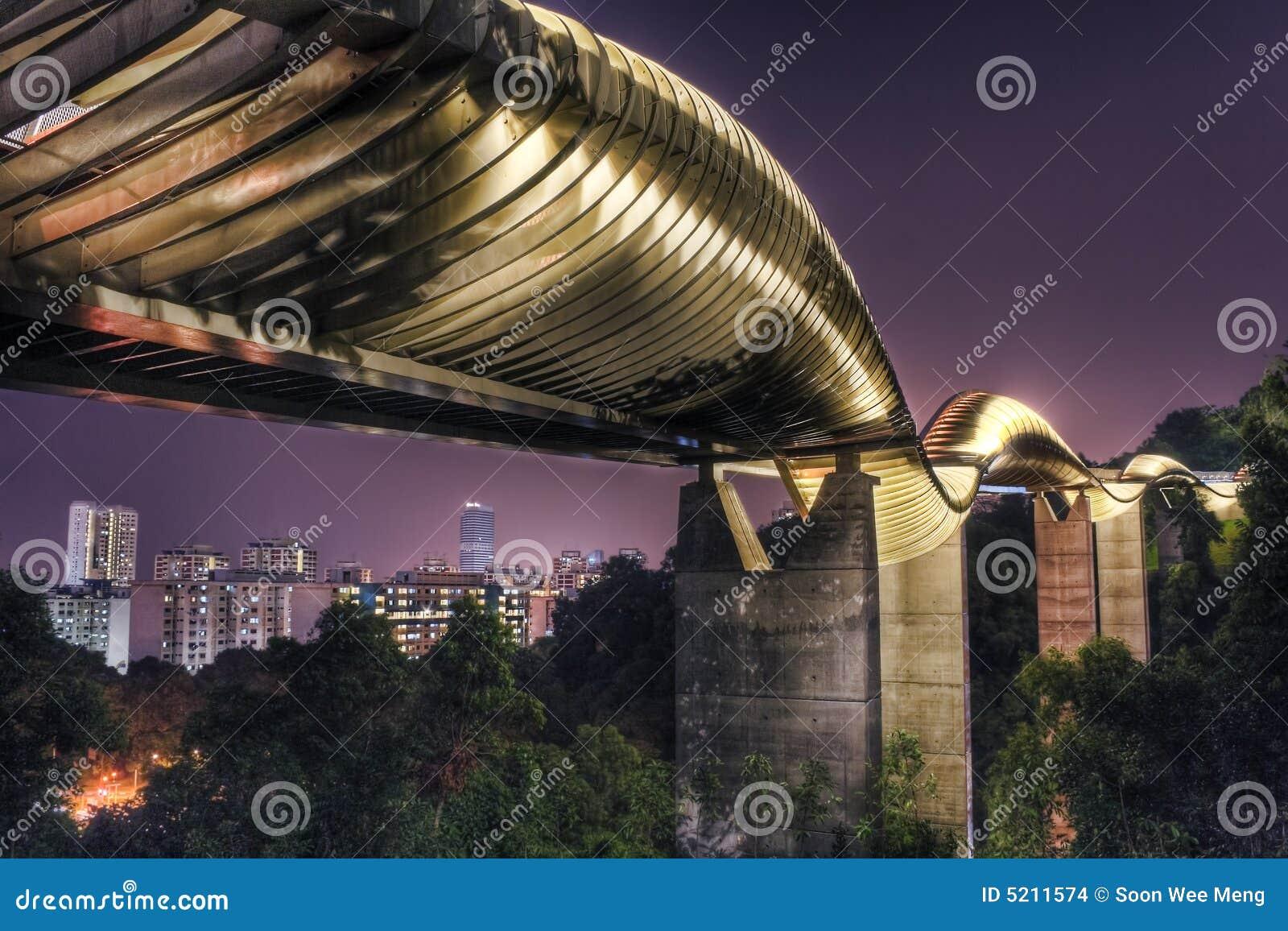 Bridge in Singapore : Henderson Waves