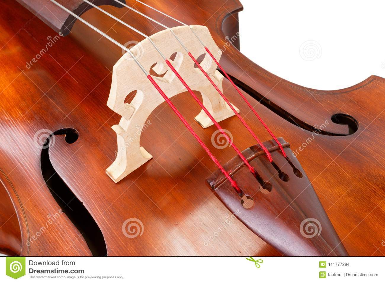 Bridge and strings on a contrabass