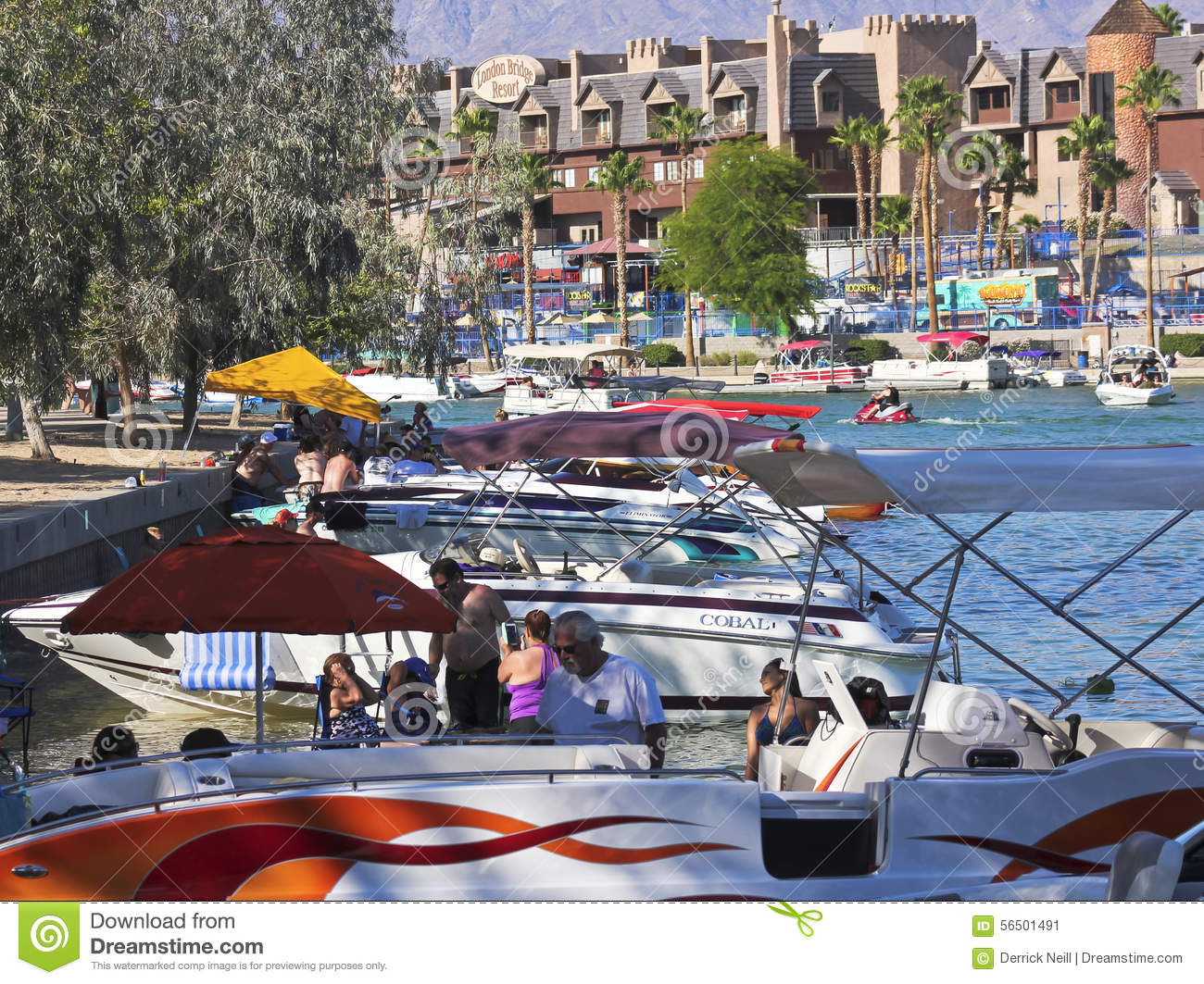 lake havasu city cougars personals This map will help you find your trash day when looking up an address you must include lake havasu city az click on the color coded area around your address to see your trash day.