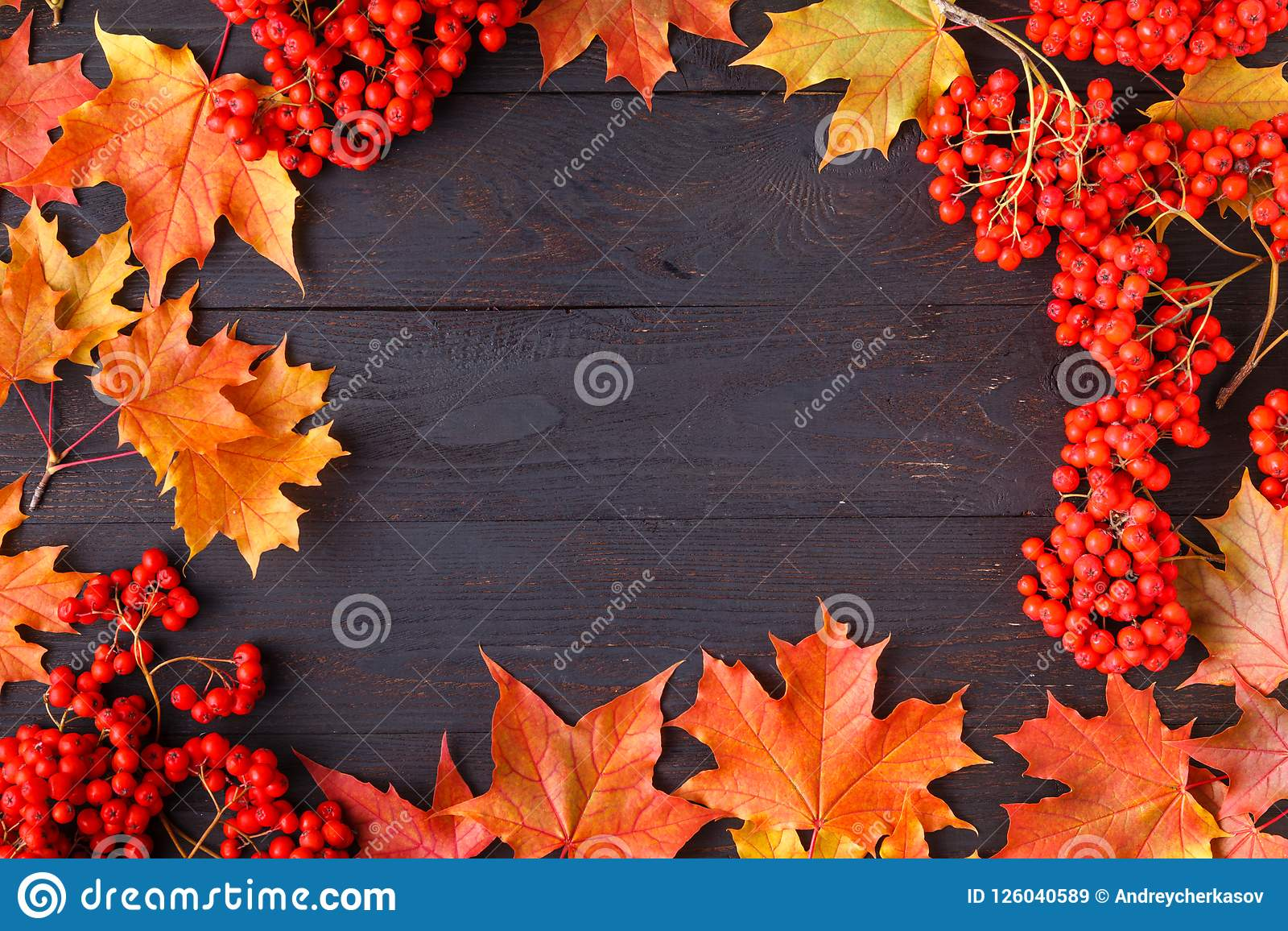 bright autumn leaves and text generic fall background perfect for