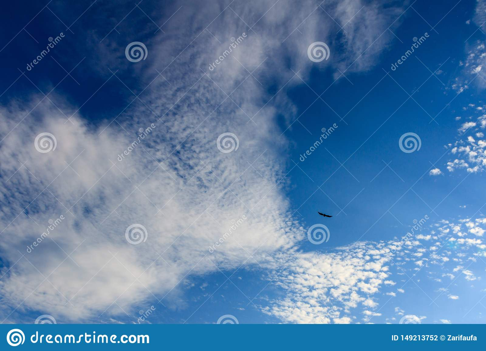 Bright and beatiful blue sky with clouds and bird on a sunny day