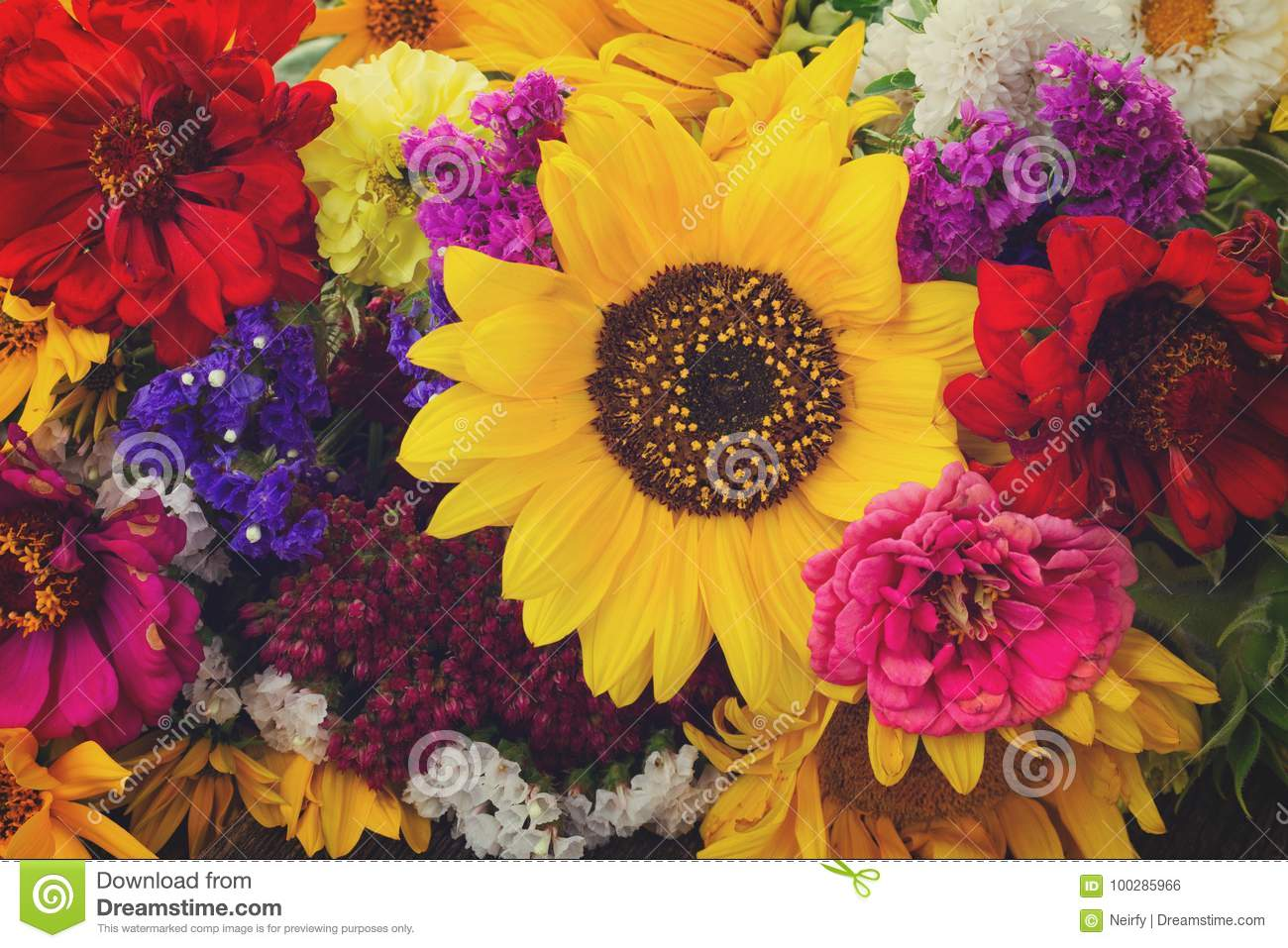 Bright Fall Bouquet Stock Photo Image Of Blossom Autumn 100285966