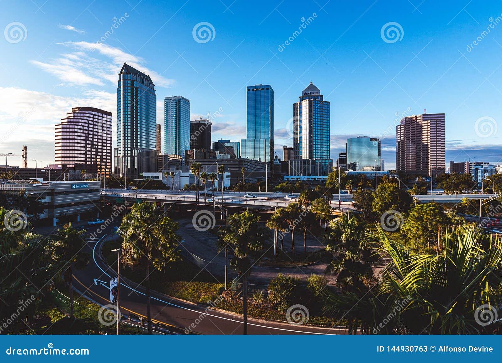 Bright City 1