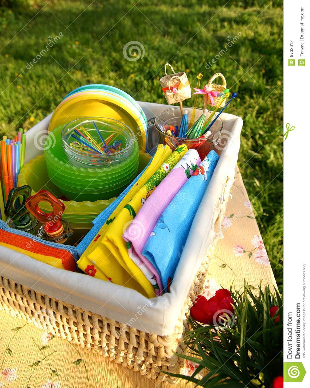 Bright color summer picnic accessories