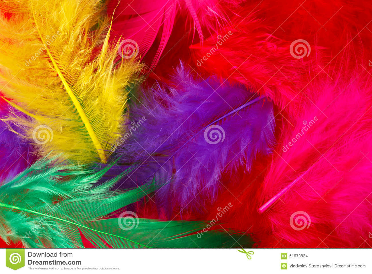 Multi Color Feathers  Natural