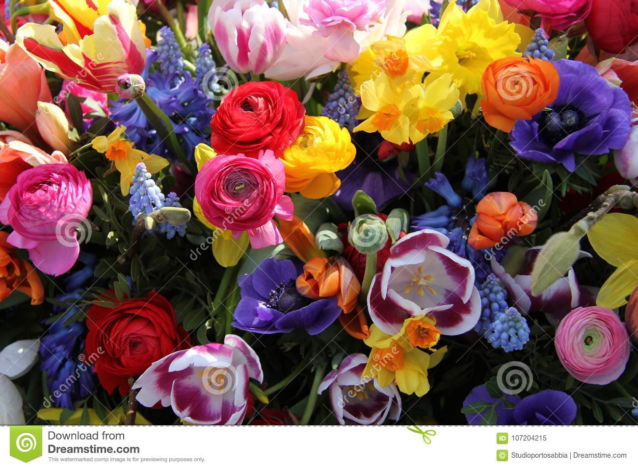 Bright Colored Spring Flower Bouquet Stock Image Image Of Common