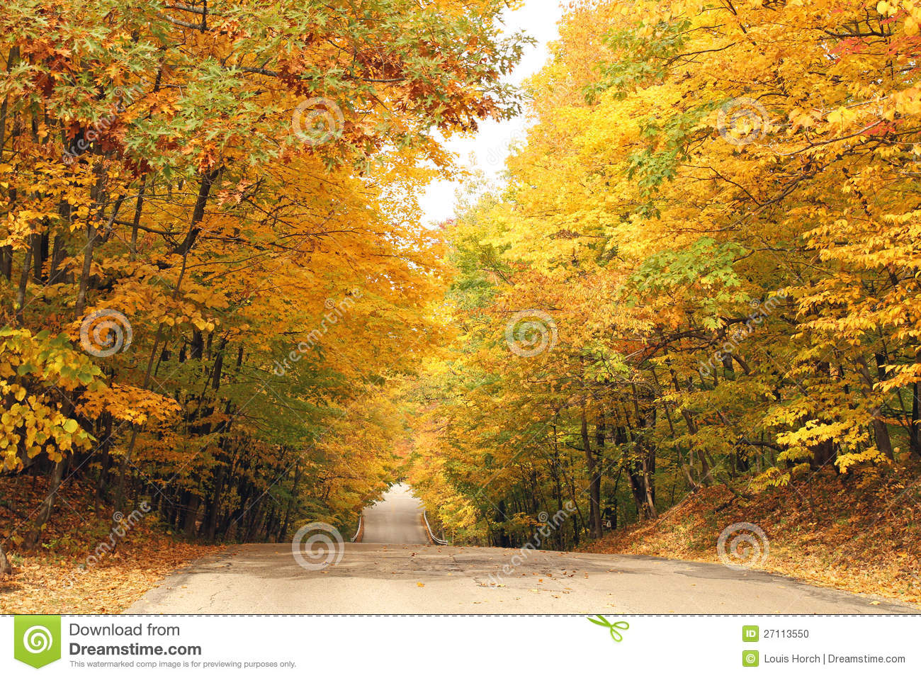 The Bright Colors Of Fall Stock Photo