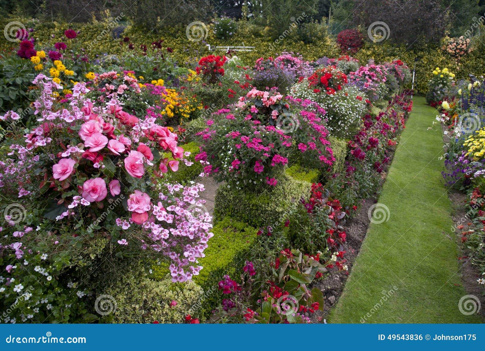 Bright & Colourful Garden