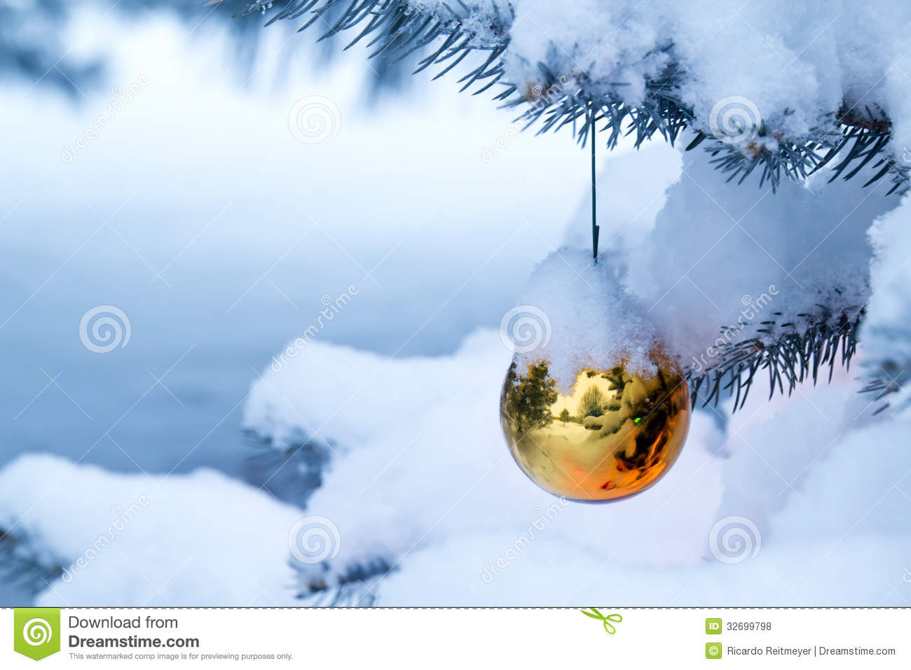 Bright Gold Ornament Hanging From A Snow Covered C Stock