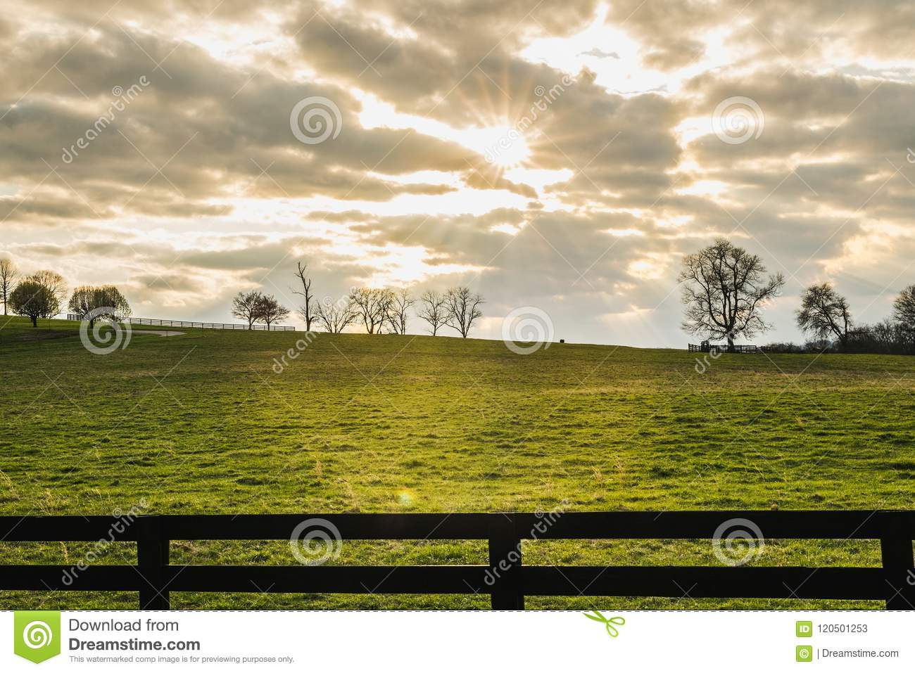 Sun Shining Through Clouds over a Green Field in late Afternoon