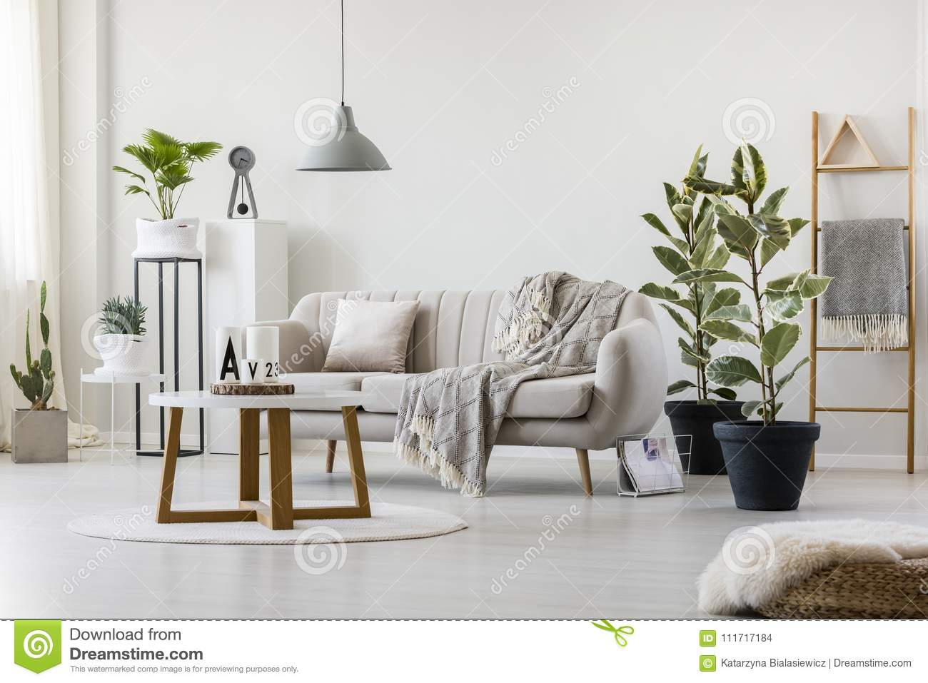 Living Room With Elegant Couch Stock Photo - Image of furniture ...