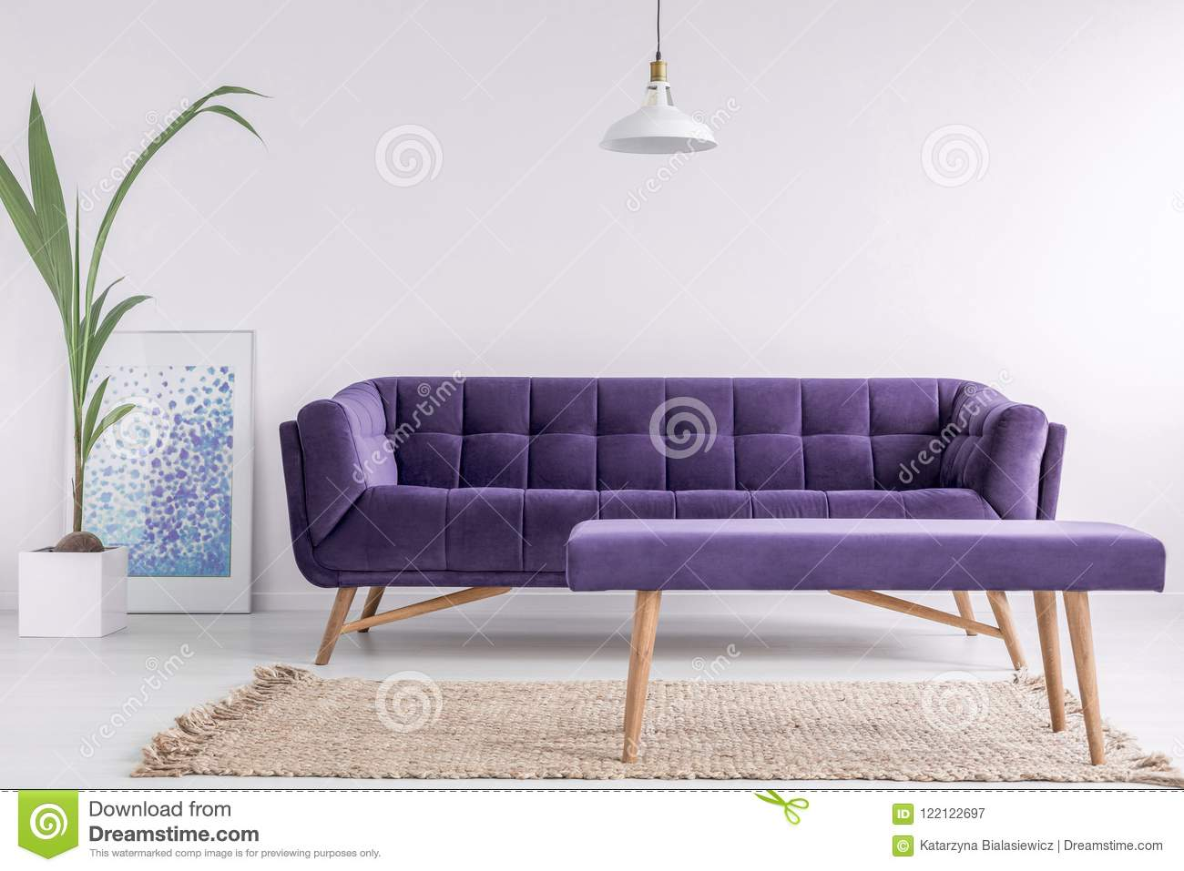 Bright living room interior with fresh plant, poster and carpet on the floor and purple couch and bench in real photo with empty w