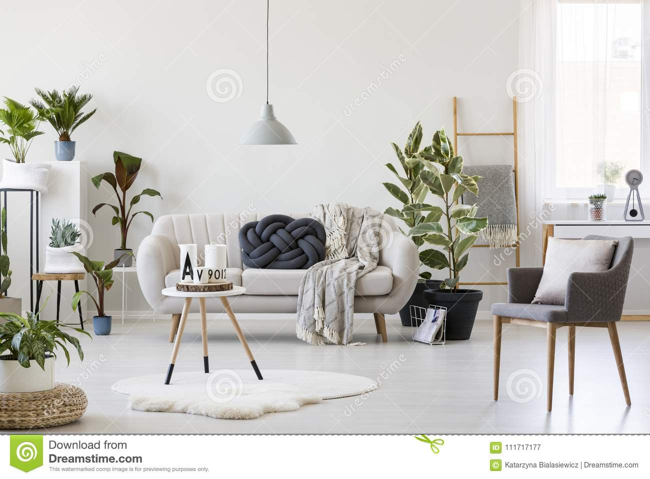 Bright Living Room With Plants Stock Image Image Of Interior