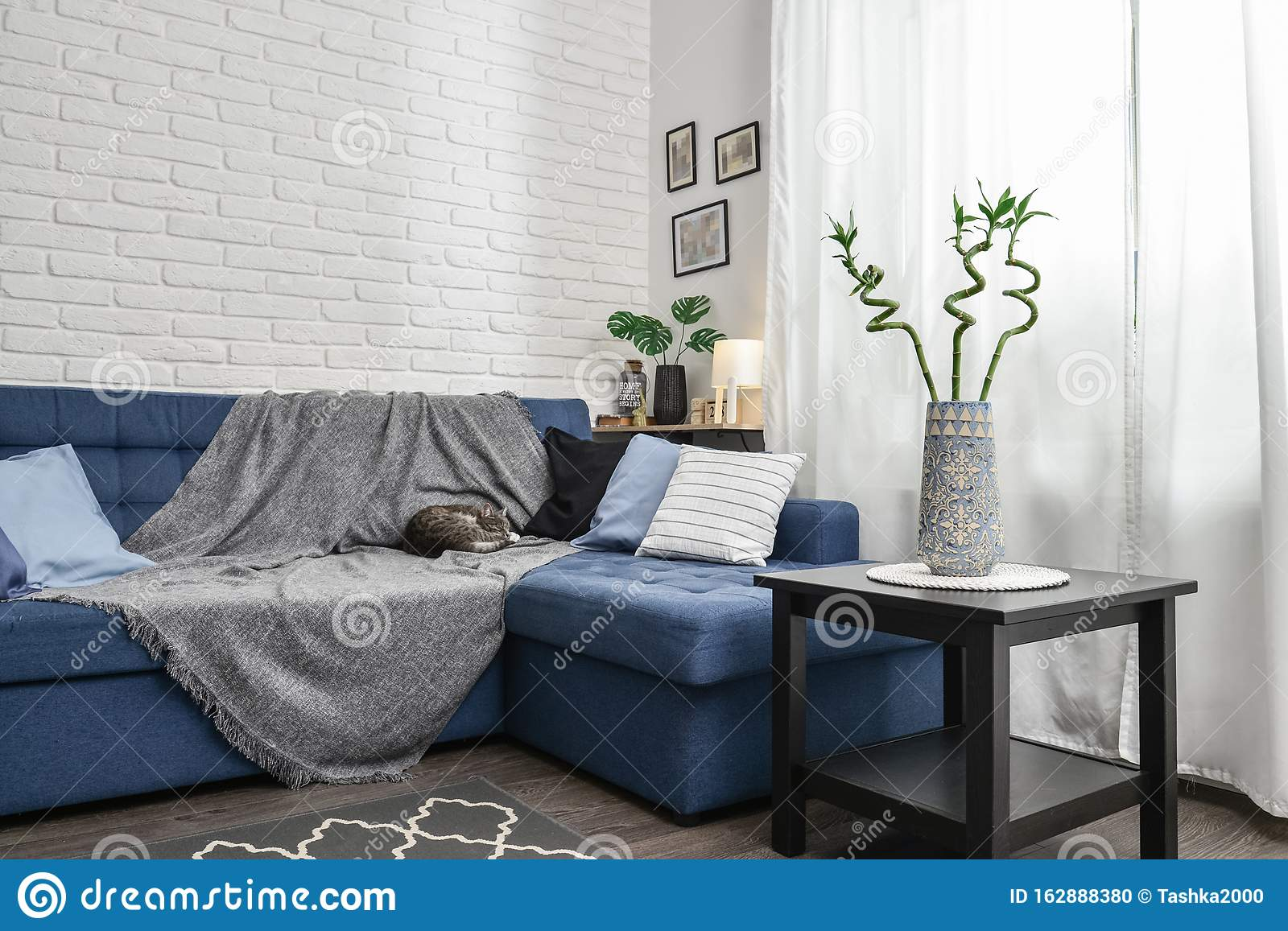 Image of: Bright Living Room In Scandinavian Style Stock Photo Image Of Couch Family 162888380