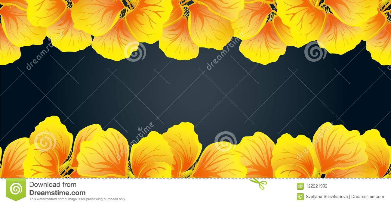 Bright Nasturtium Seamless border. Yellow flowers. Beautiful Horizontal banner. Dark background. Card, invitation, poster