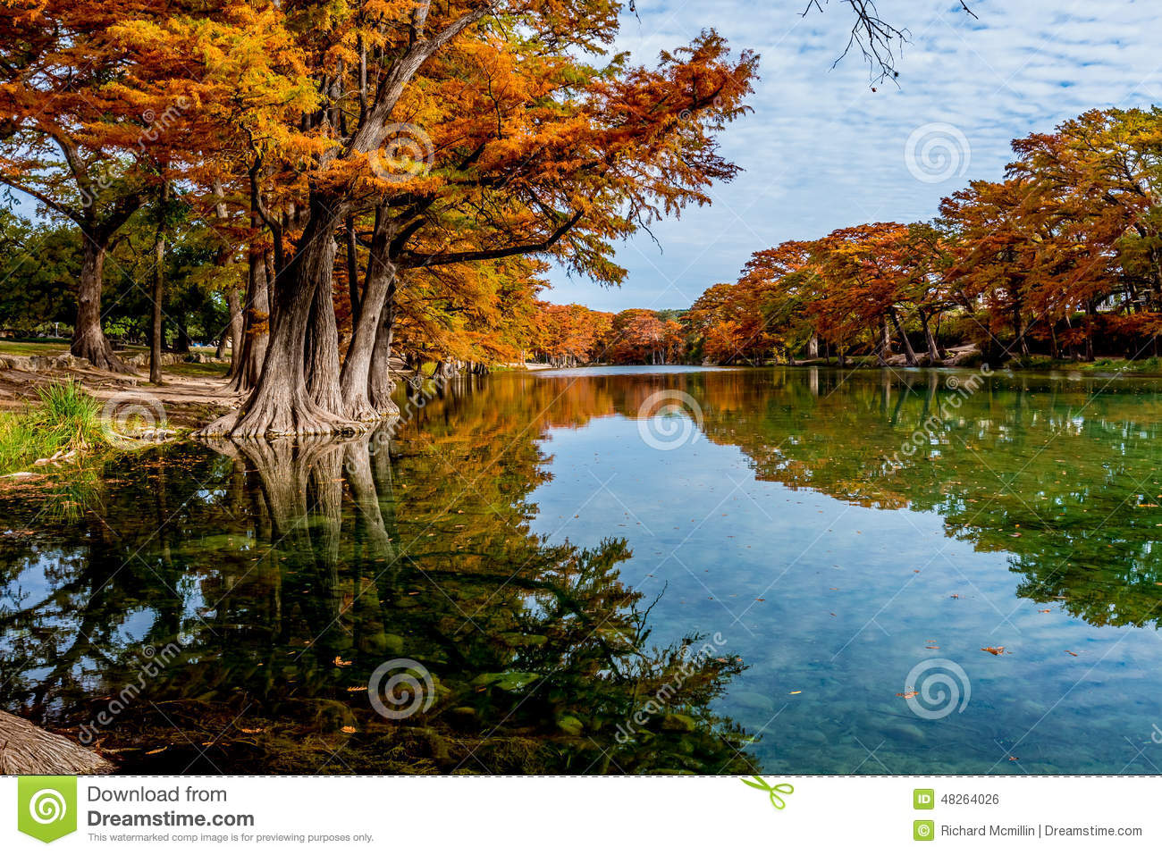 Bright Orange Fall Foliage on the Crystal Clear River at Garner State Park, Texas