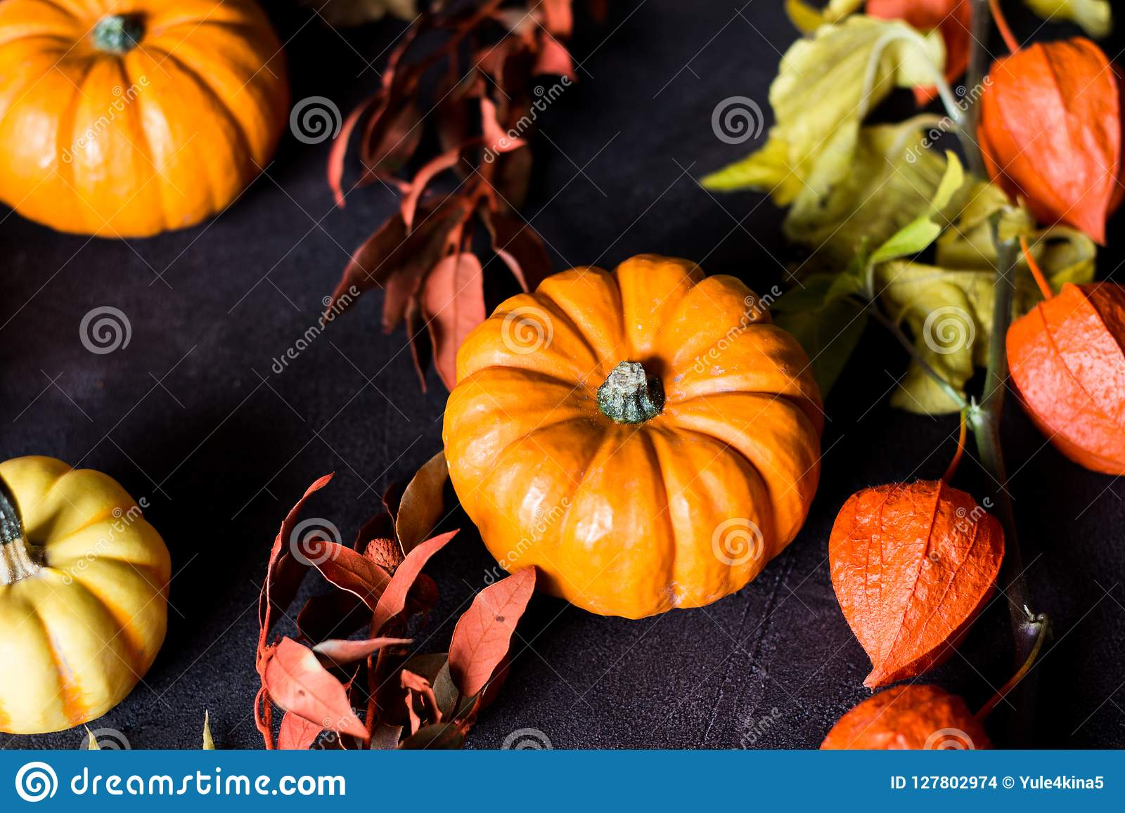 Bright orange mini pumpkins for halloween on black background