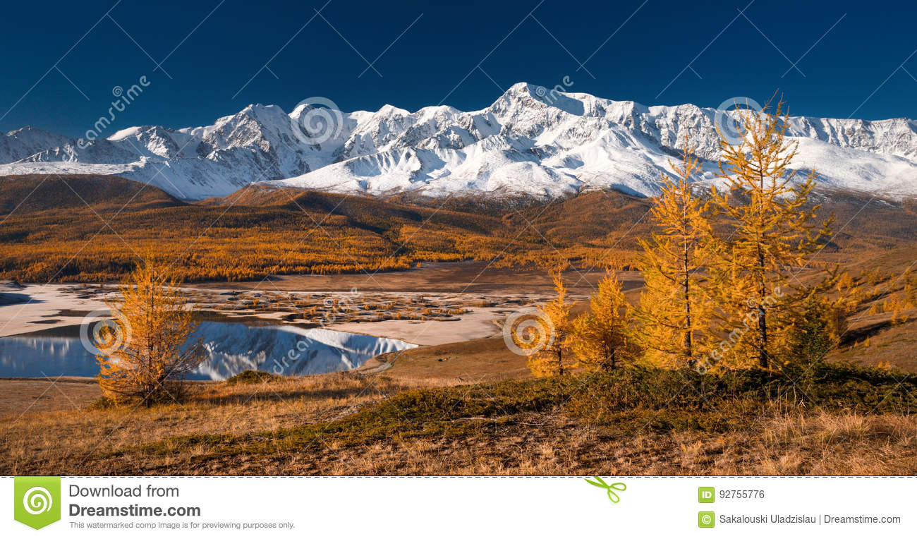 Bright picturesque autumn landscape with mountains covered with snow, forest, yellow larches and beautiful lake with reflections