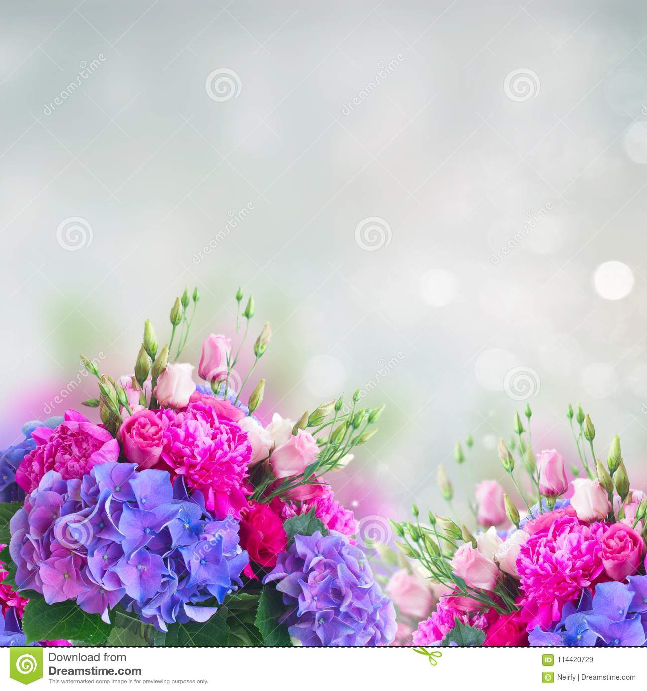 Bright pink and blue flowers stock image image of bloom blossom bright pink and blue flowers izmirmasajfo