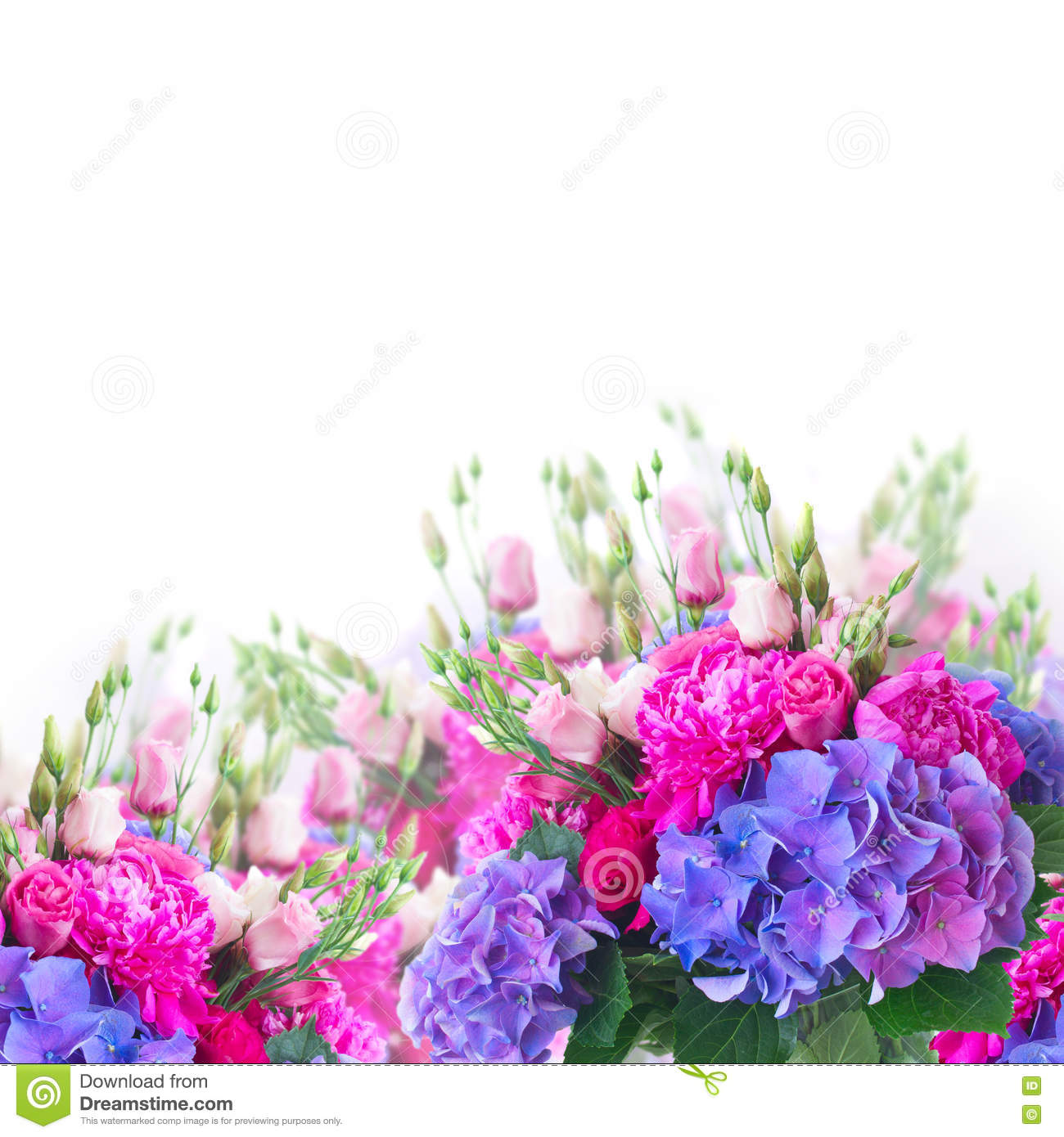 Bright pink and blue flowers stock image image of arrangement bright pink and blue flowers izmirmasajfo
