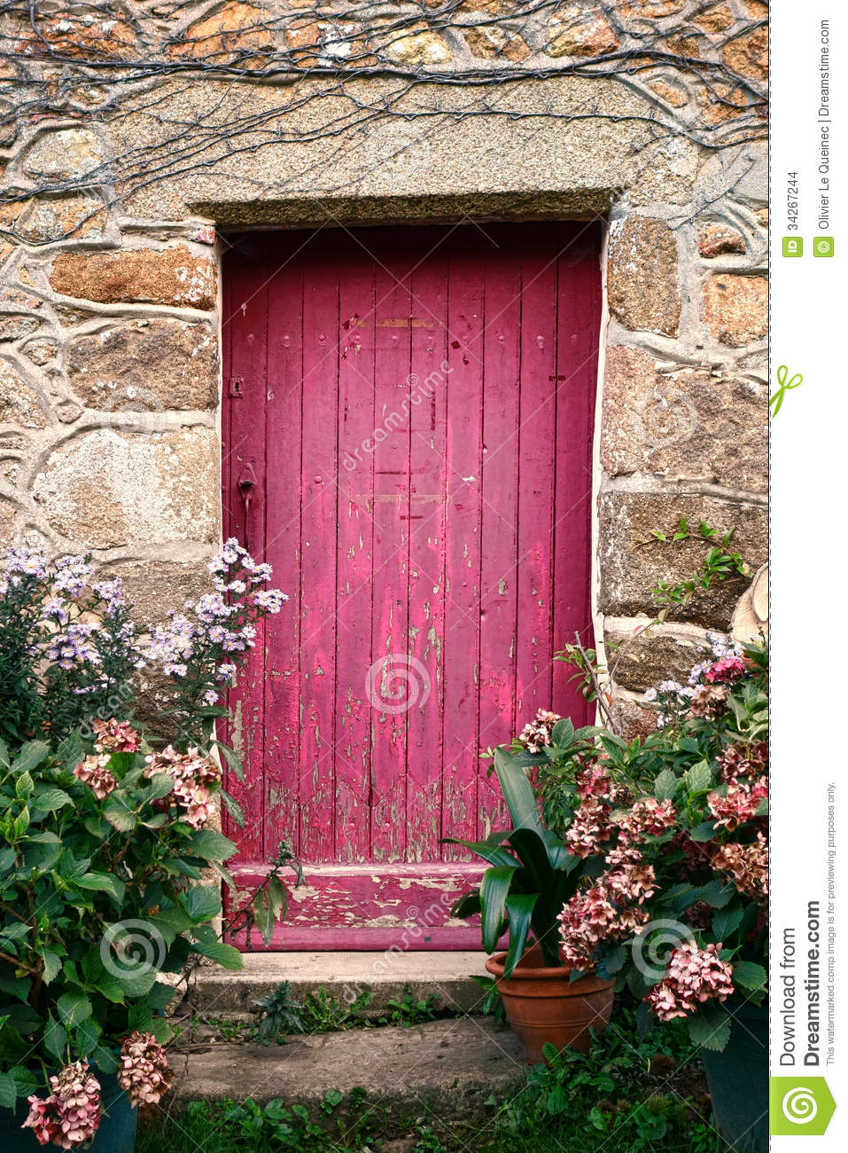 Bright Pink Paint Wood Door on Old Stone House