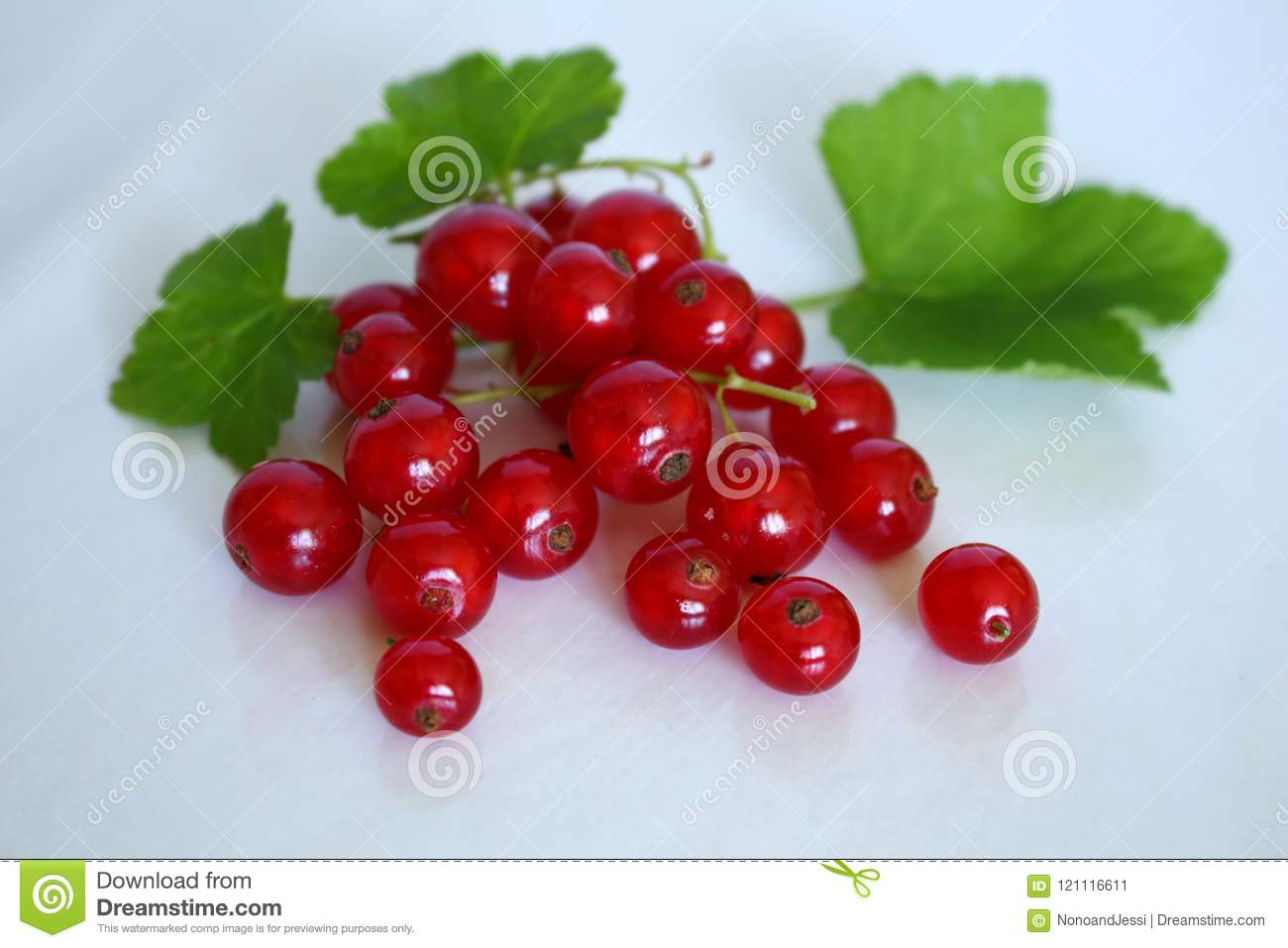 Bright red bunch of red currants and appetizing with its green leaves on white studio background