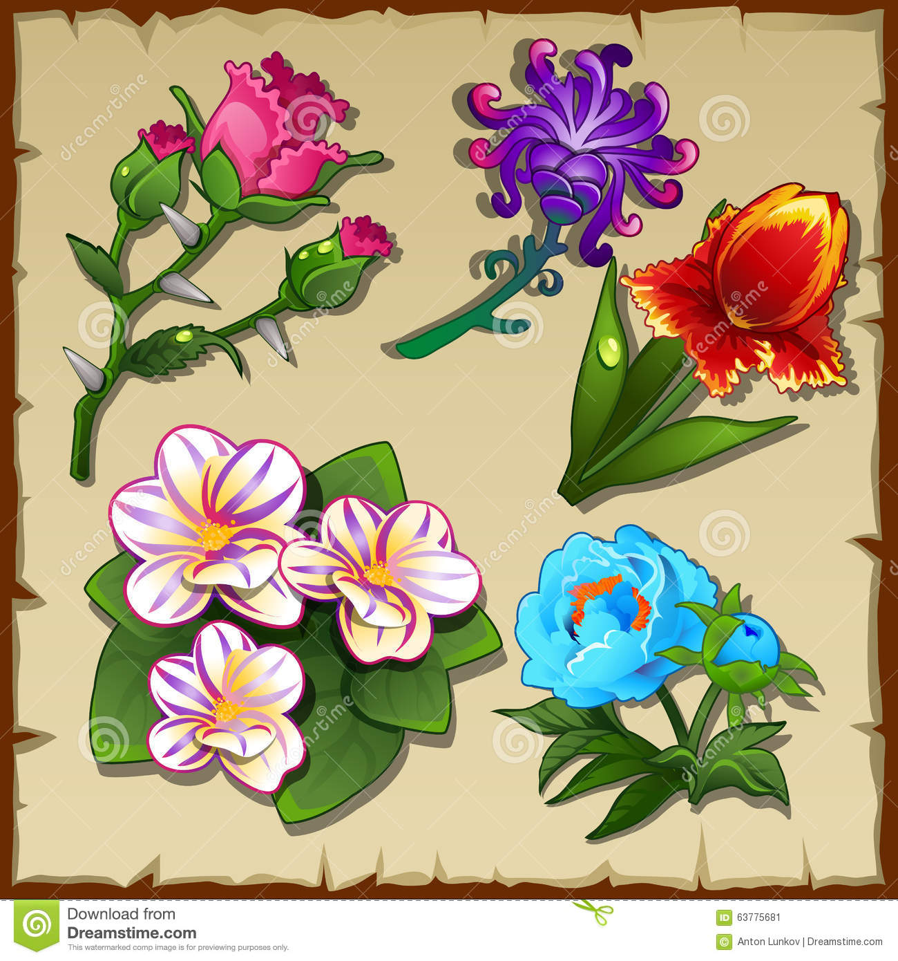 Bright Set Five Different Types Flowers Stock Illustration Image 637