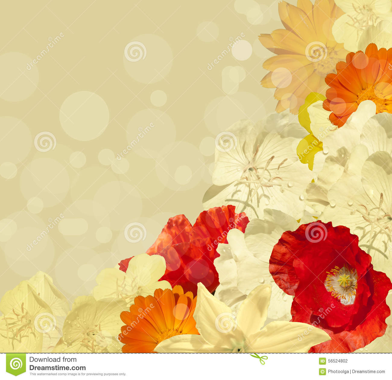bright yellow flower background stock photo image 56524802