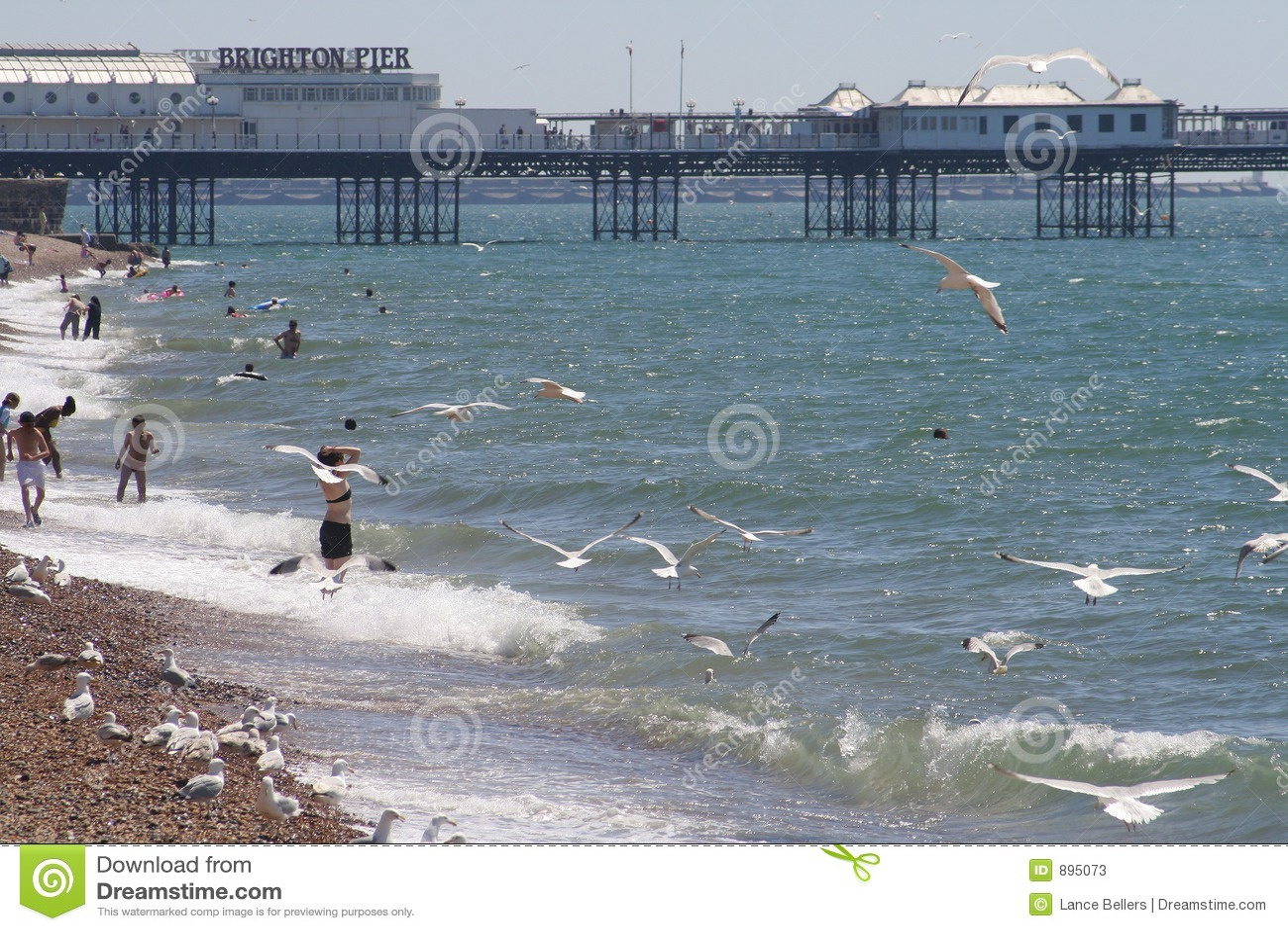 Brighton beach molo