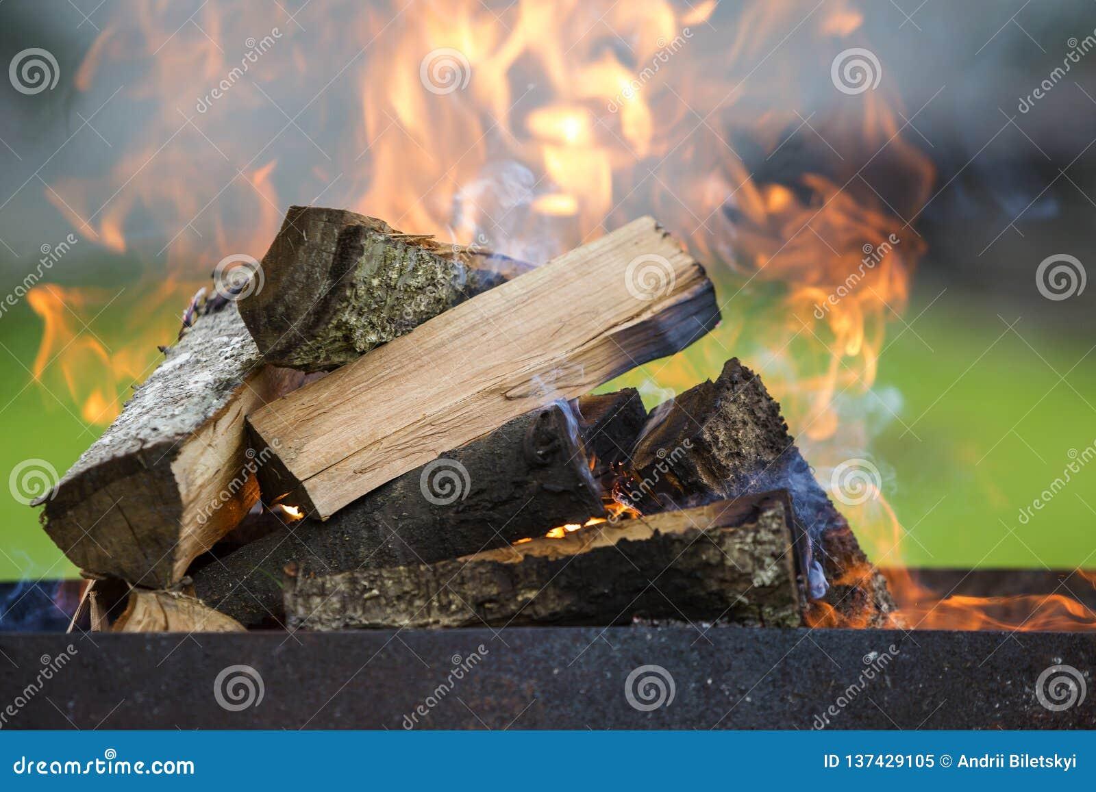 Brilhantemente queimando-se na lenha da caixa do metal para o assado exterior Conceito do acampamento, da segurança e do turismo
