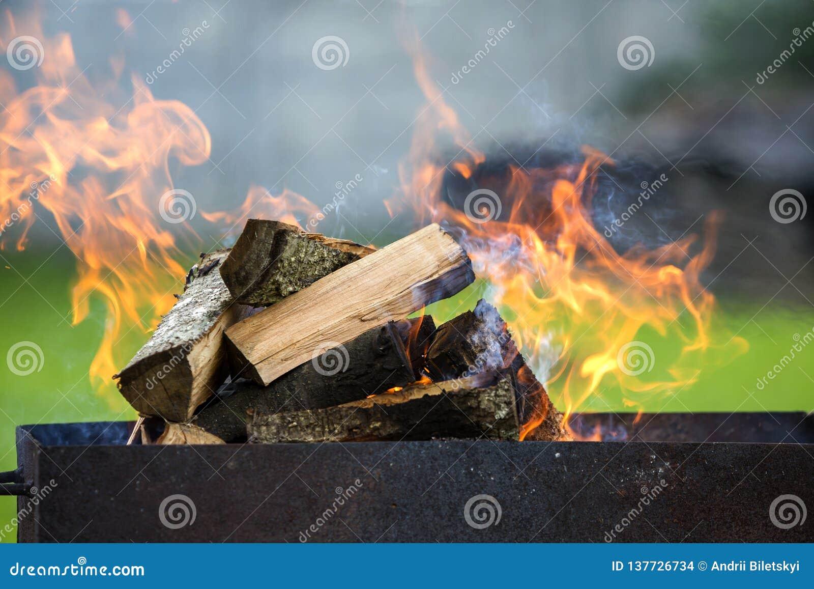 Brillantemente quemando en la leña de la caja del metal para la barbacoa al aire libre Concepto el acampar, de la seguridad y del