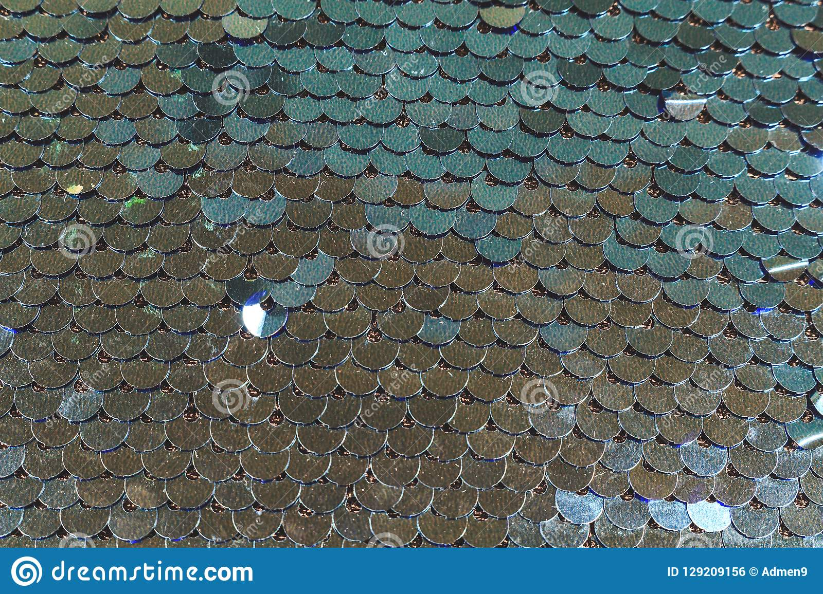 Brilliant fish scales shimmers in different colors of blue silver