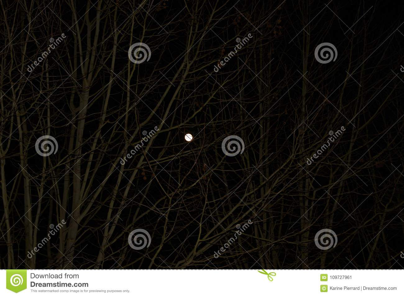 A brilliant moonlight - Seen from a distance
