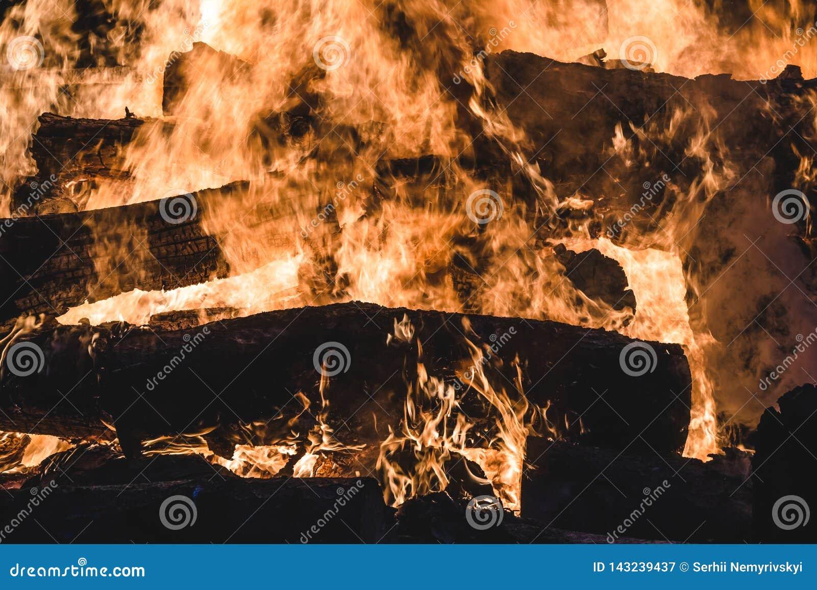Brinnande träd för brasa på natten Stor orange flamma på en svart bakgrund svart brand Ljust värme, ljus som campar,