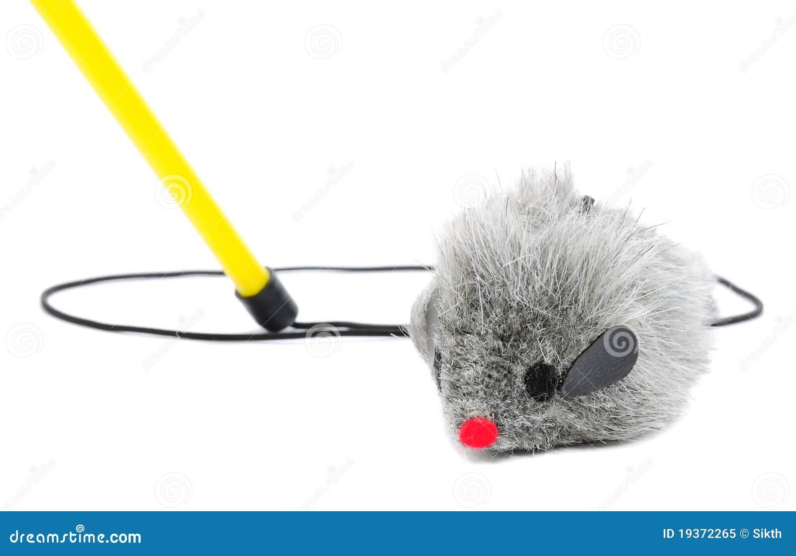 Brinquedo da pesca do gato - rato na corda com Pólo