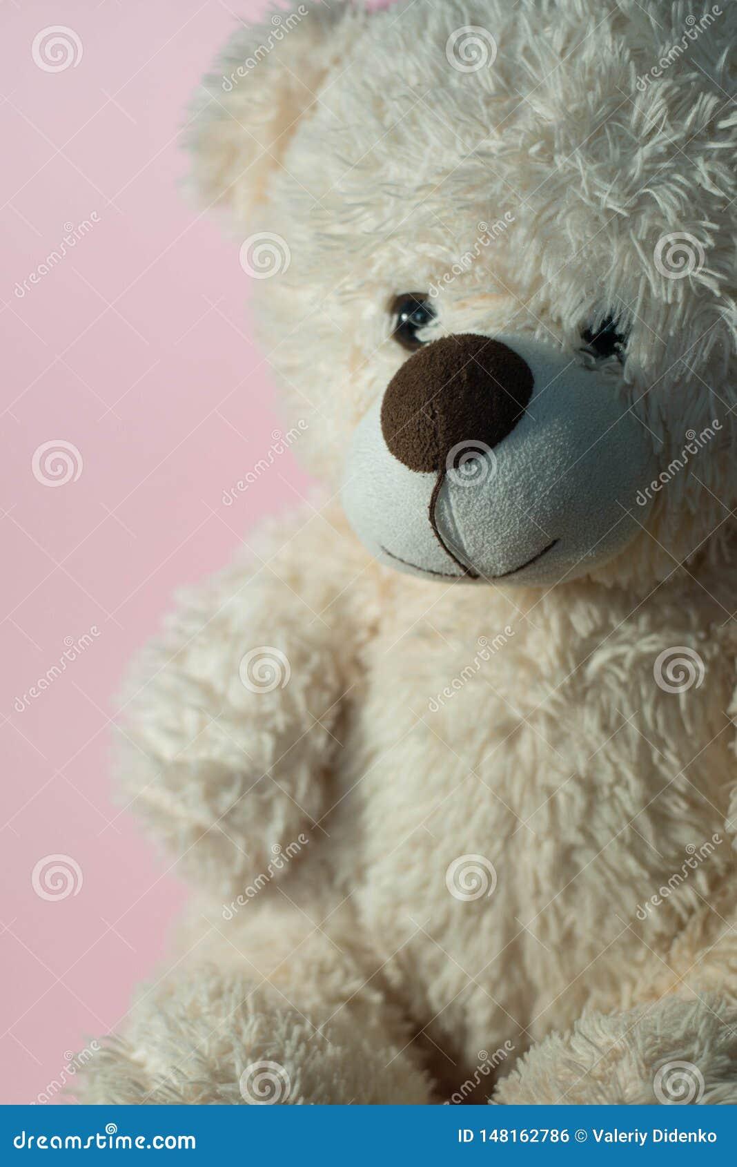 Brinquedo macio ?urso ?