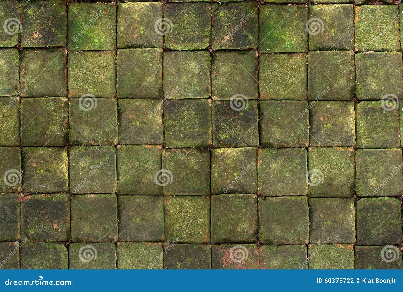 Brique carrée avec de la mousse sur le dessus