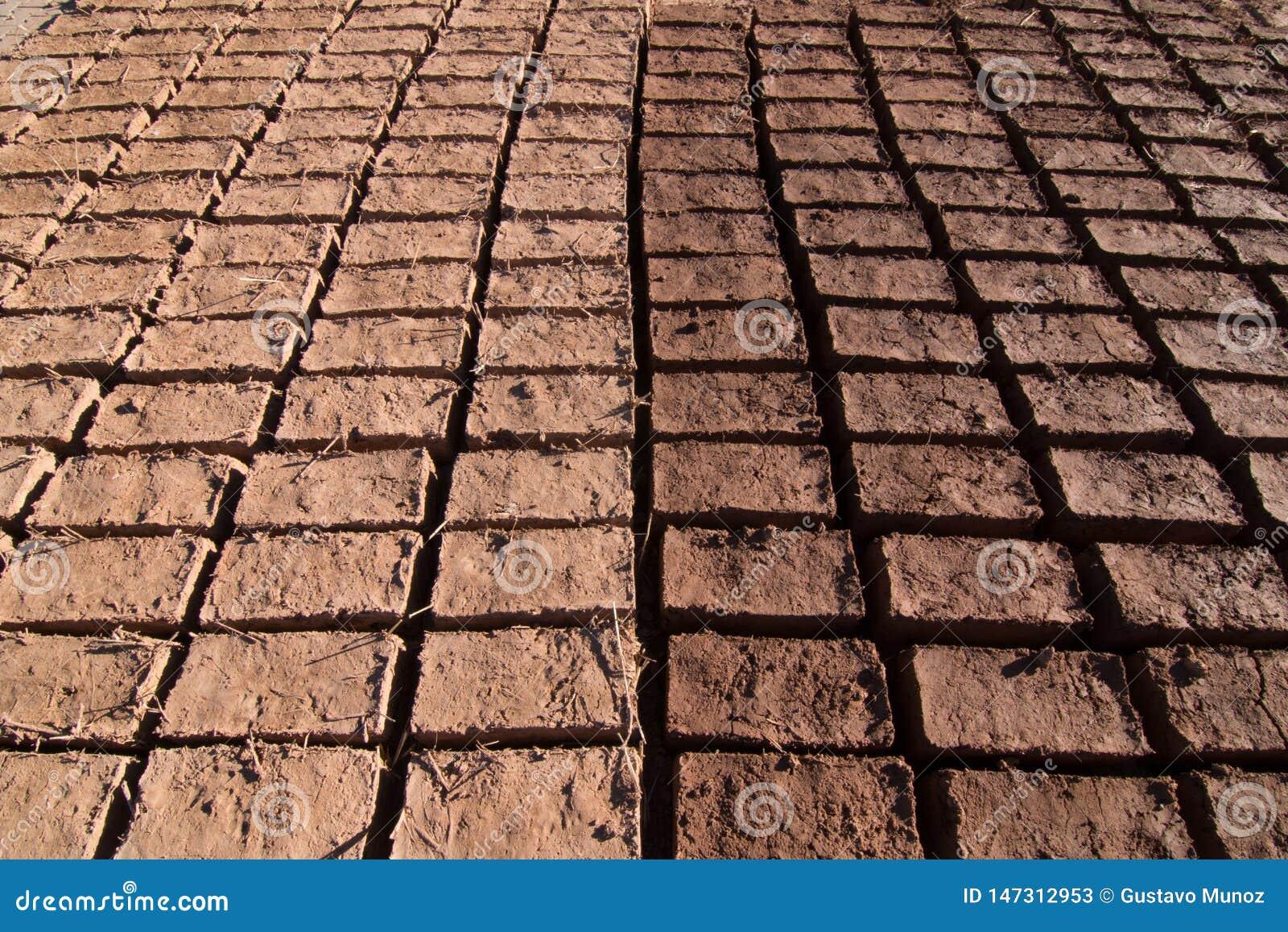 Briques d Adobe séchant au soleil pour la construction dans Ouarzazate formant un modèle