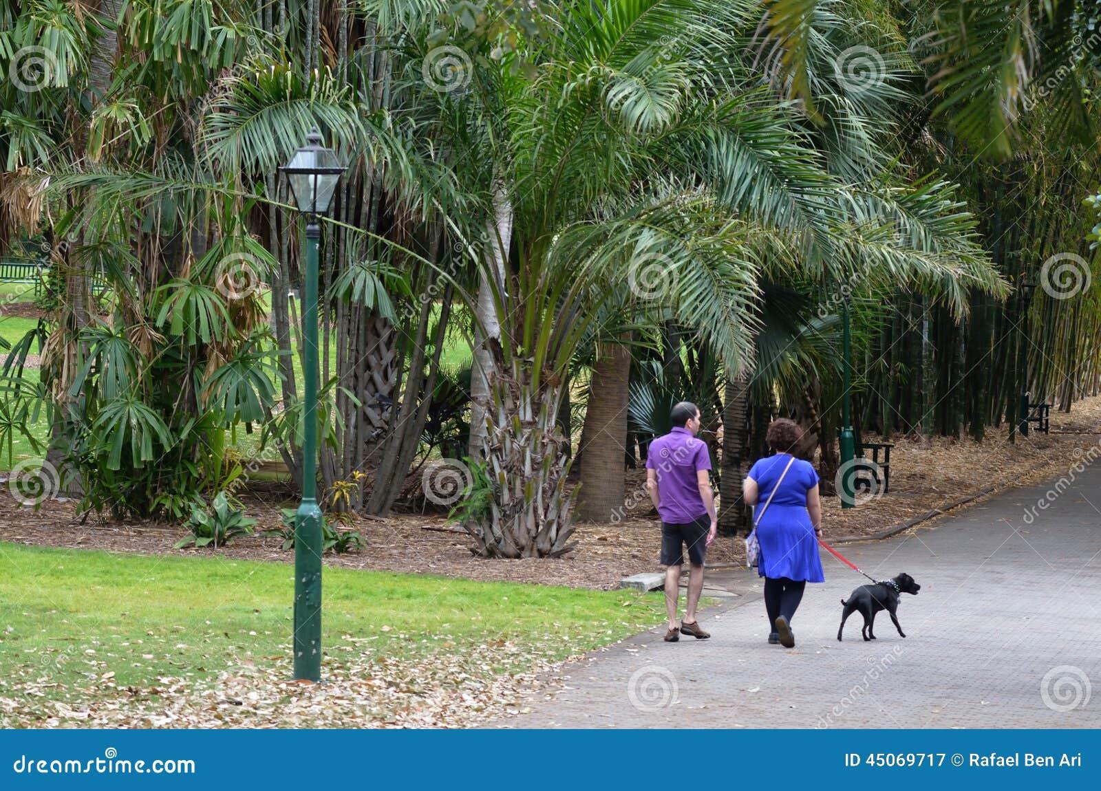 Date and time.com in Brisbane