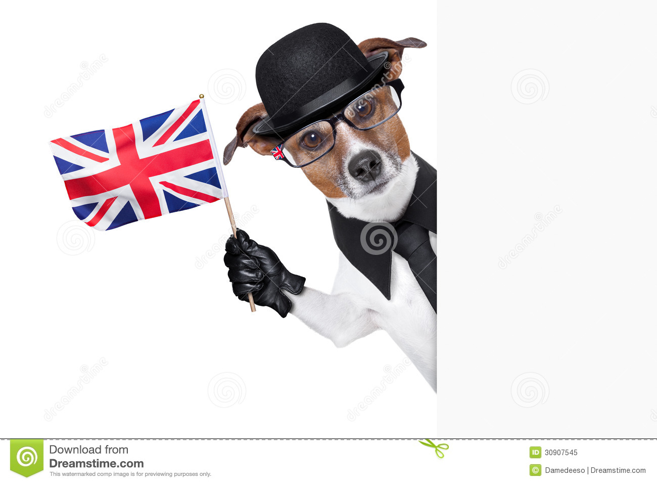 Funny Patriotic Dog Pictures