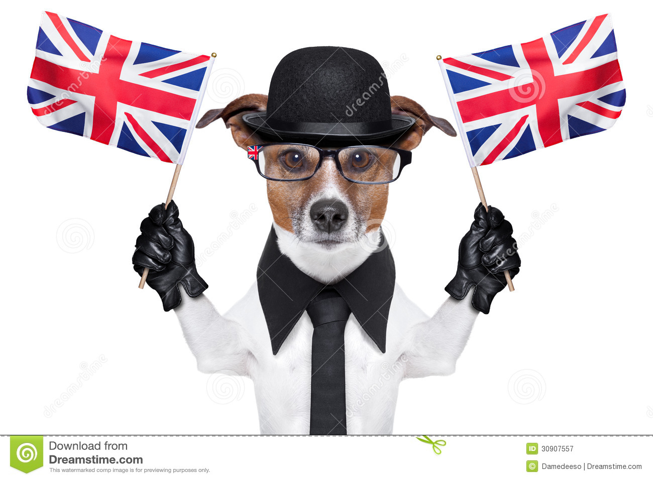 British dog with black bowler hat and black suit waving flags.