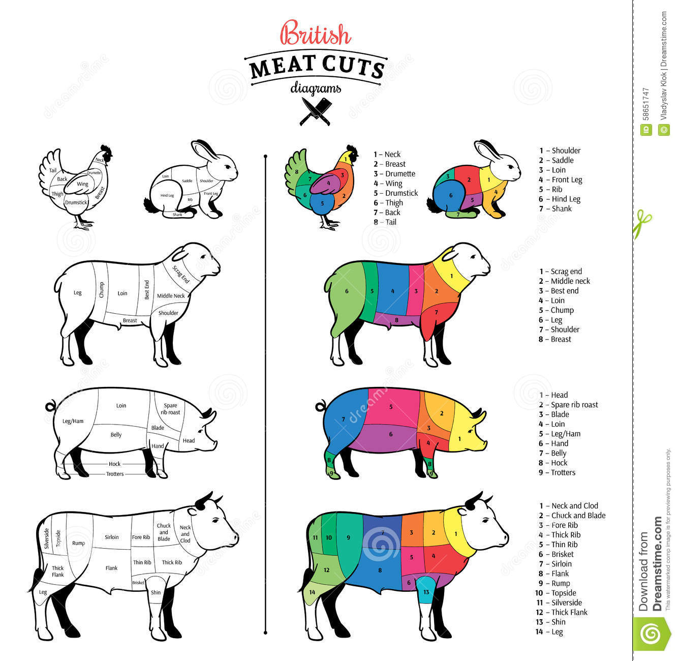 Meat Cuts Diagram Label Guide And Troubleshooting Of Wiring Pig Cut British Diagrams Stock Vector Image 58651747 Best Beef Chart