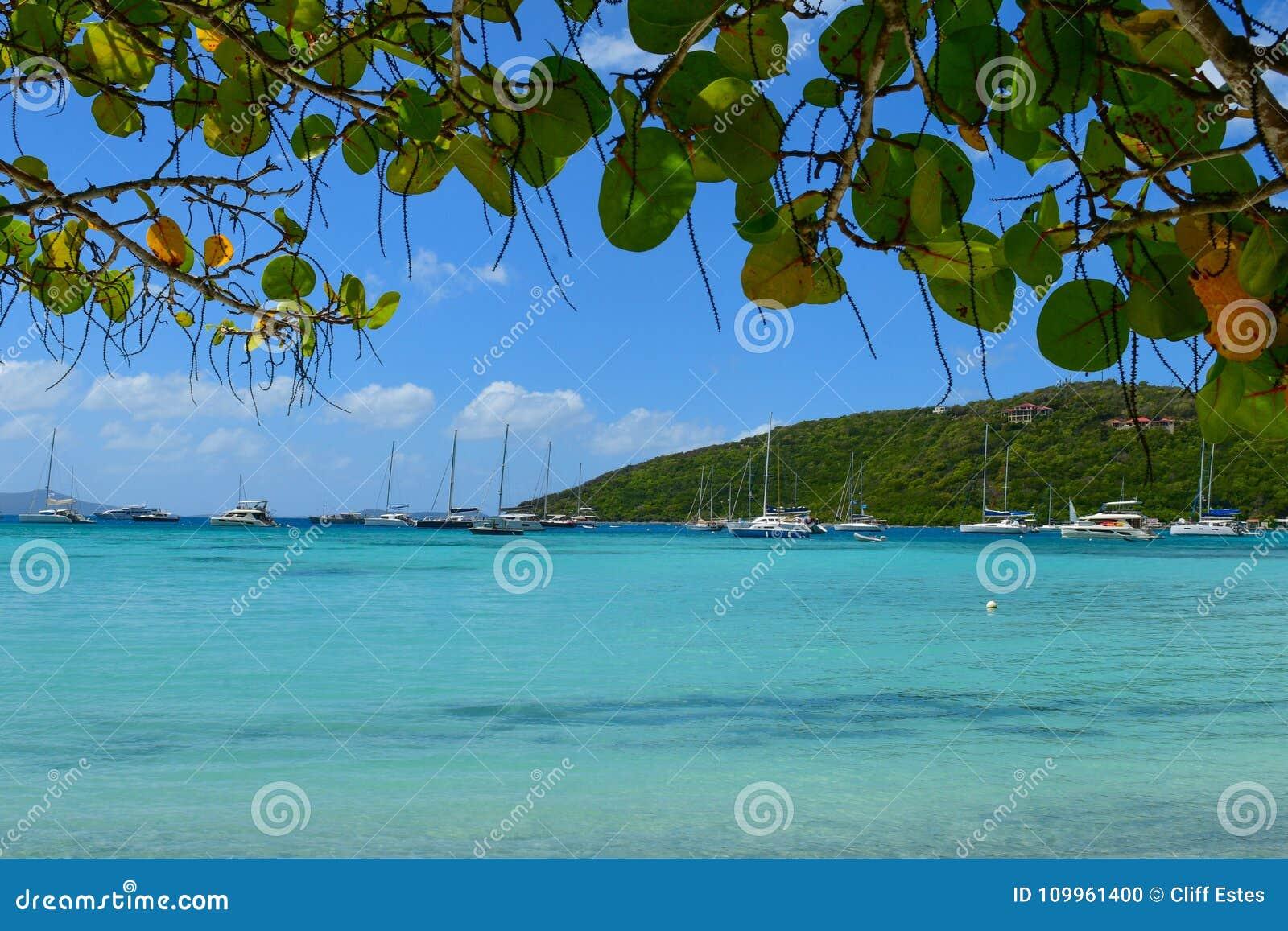 British Virgin Islands Beach