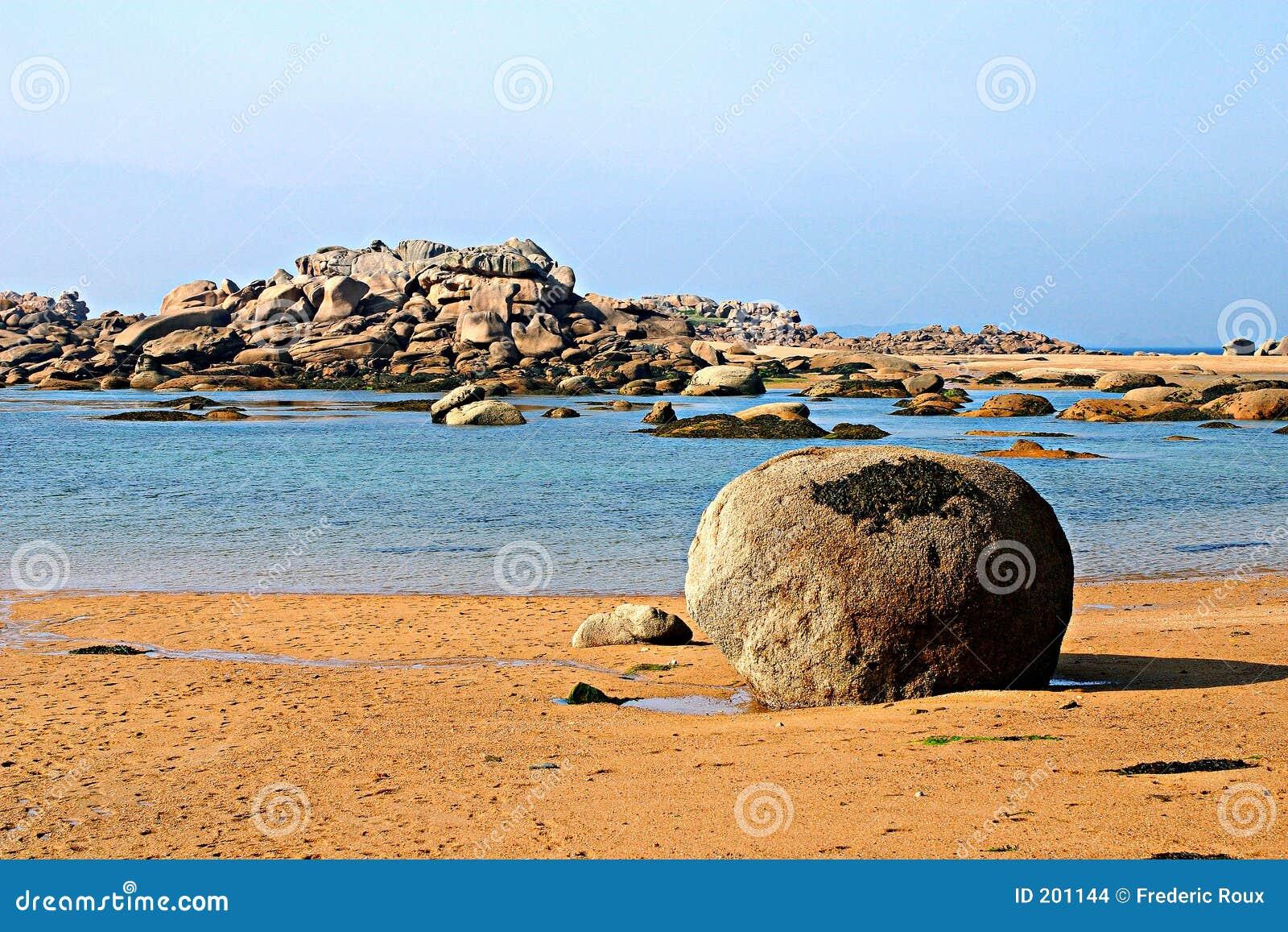 Brittany na plaży