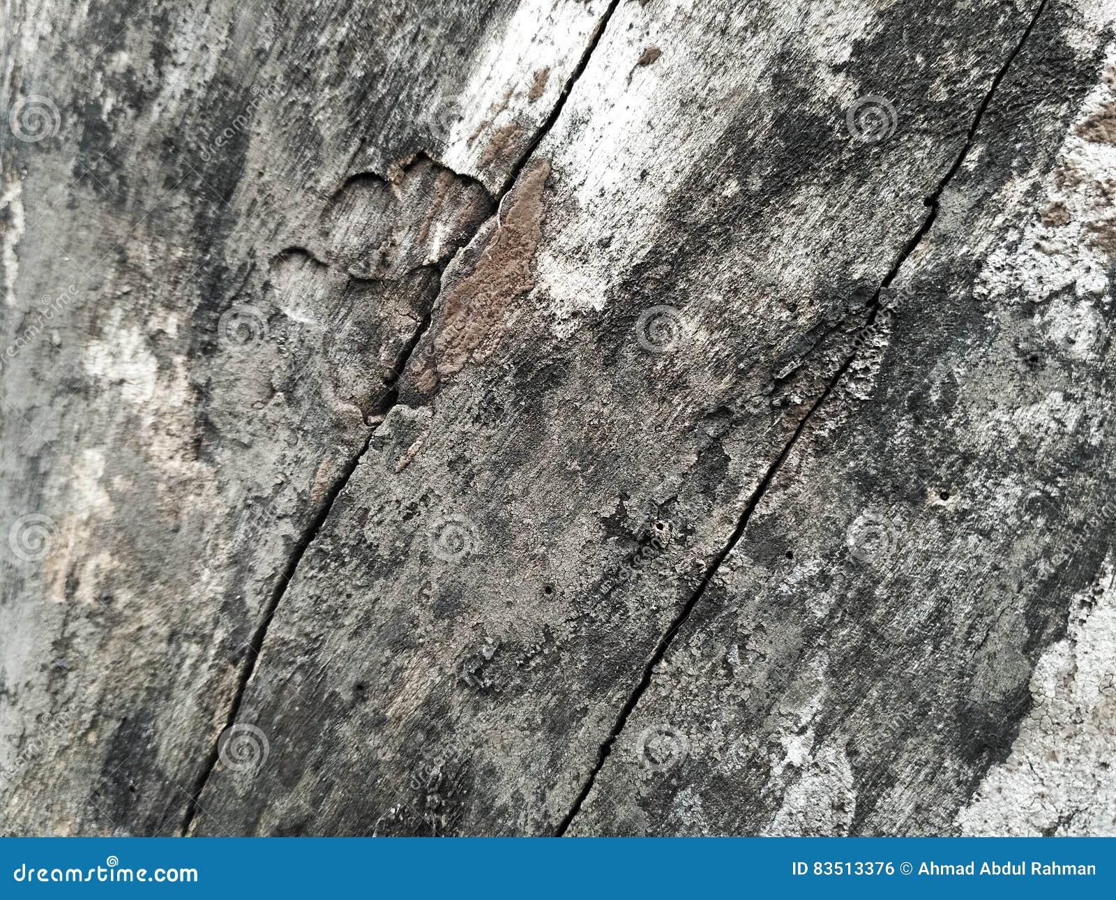 brittle wood