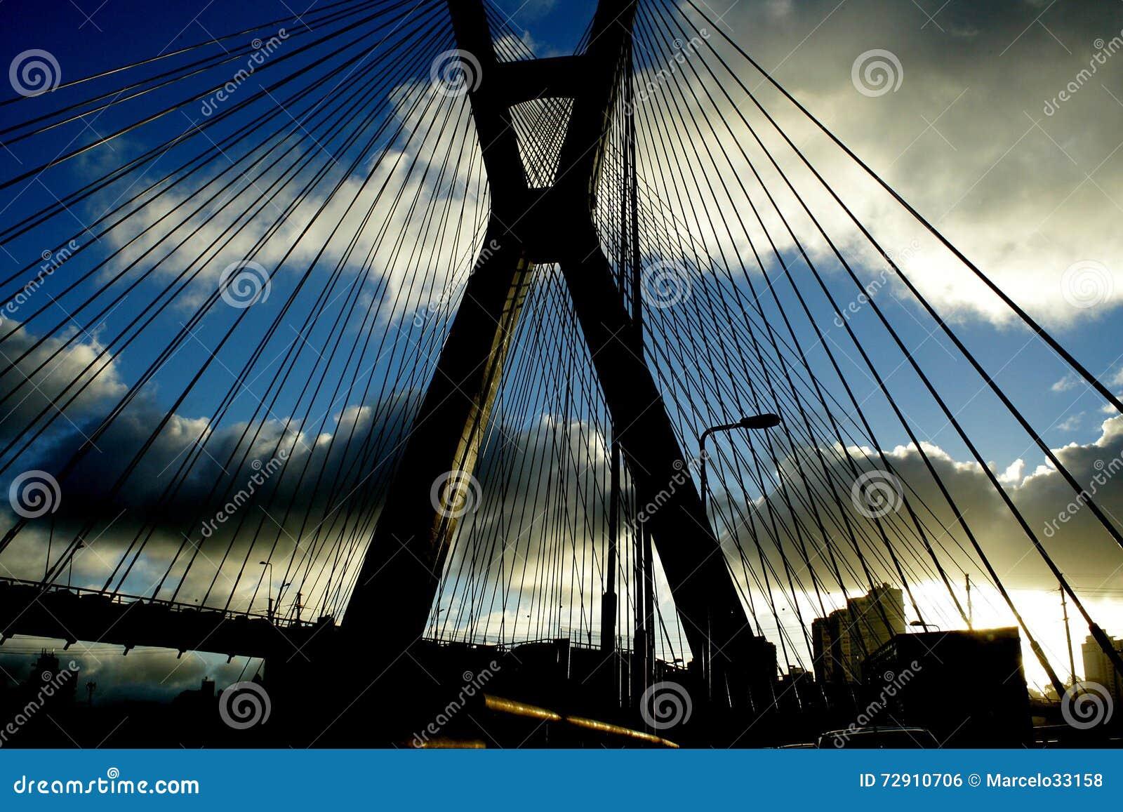 Bro i staden av São Paulo