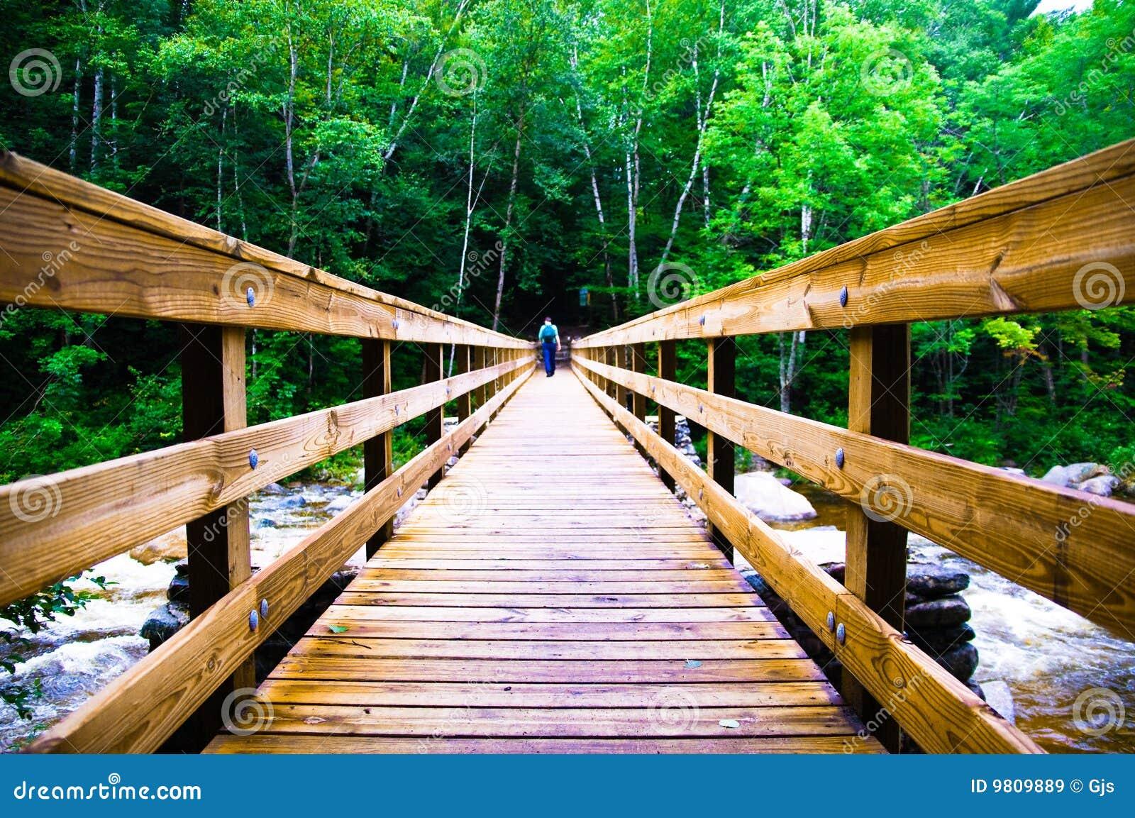 Bro som korsar läskigt trä