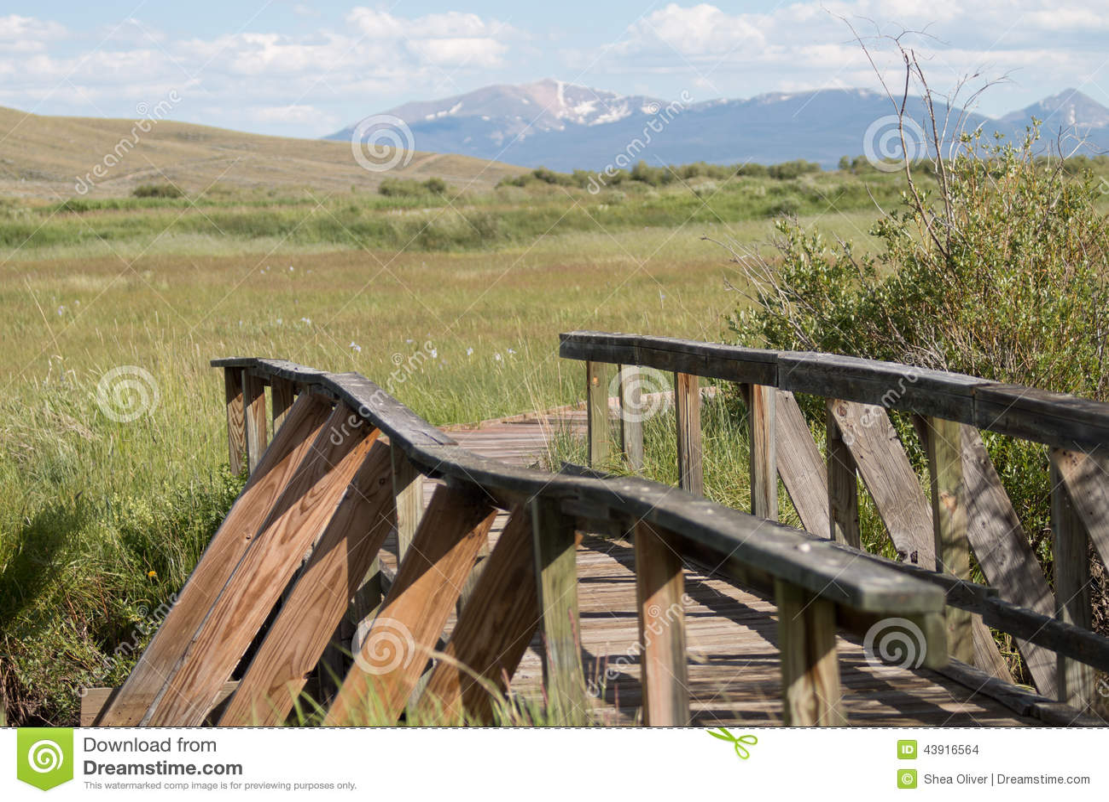 Bro till en trägångbana