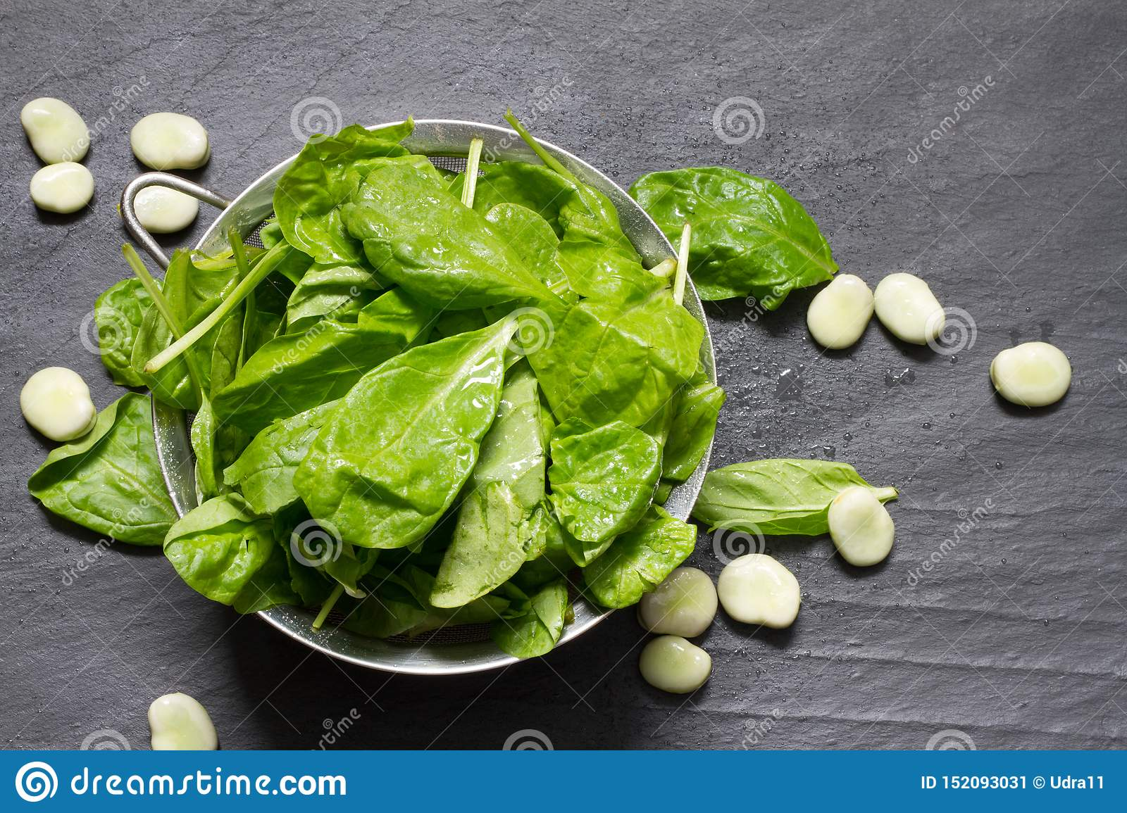 Broad bean and spinach healthy diet food